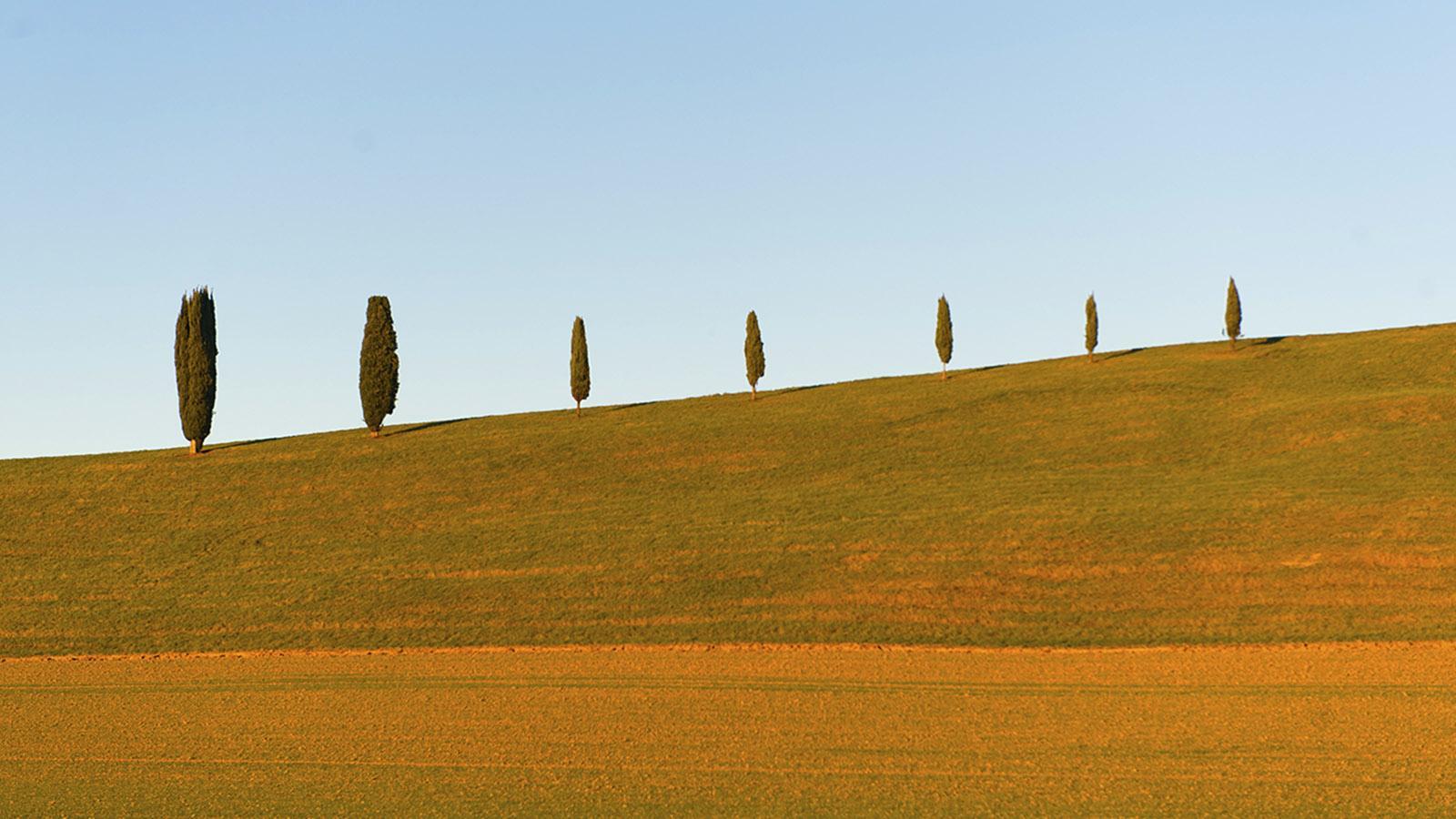 Diagonale du Vide: Im Gers. Foto: Hilke Maunder