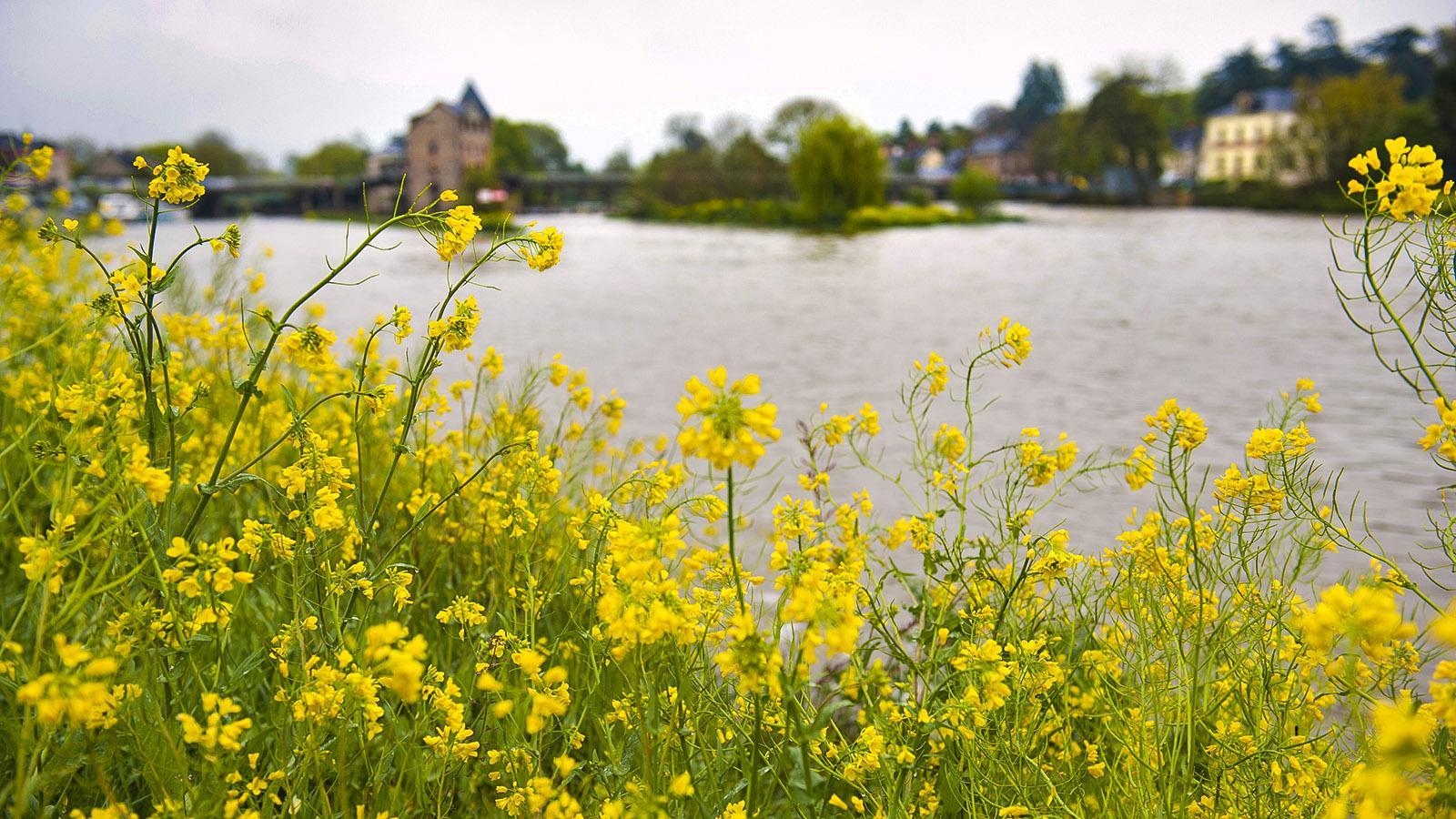 Messac: Vilaine. Foto: Hilke Maunder