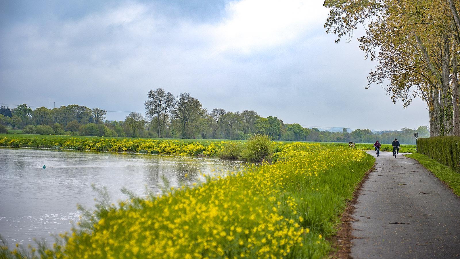 Messac: Treidelpfad an der Vilaine, ausgebaut zum Radweg. Foto: Hilke Maunder