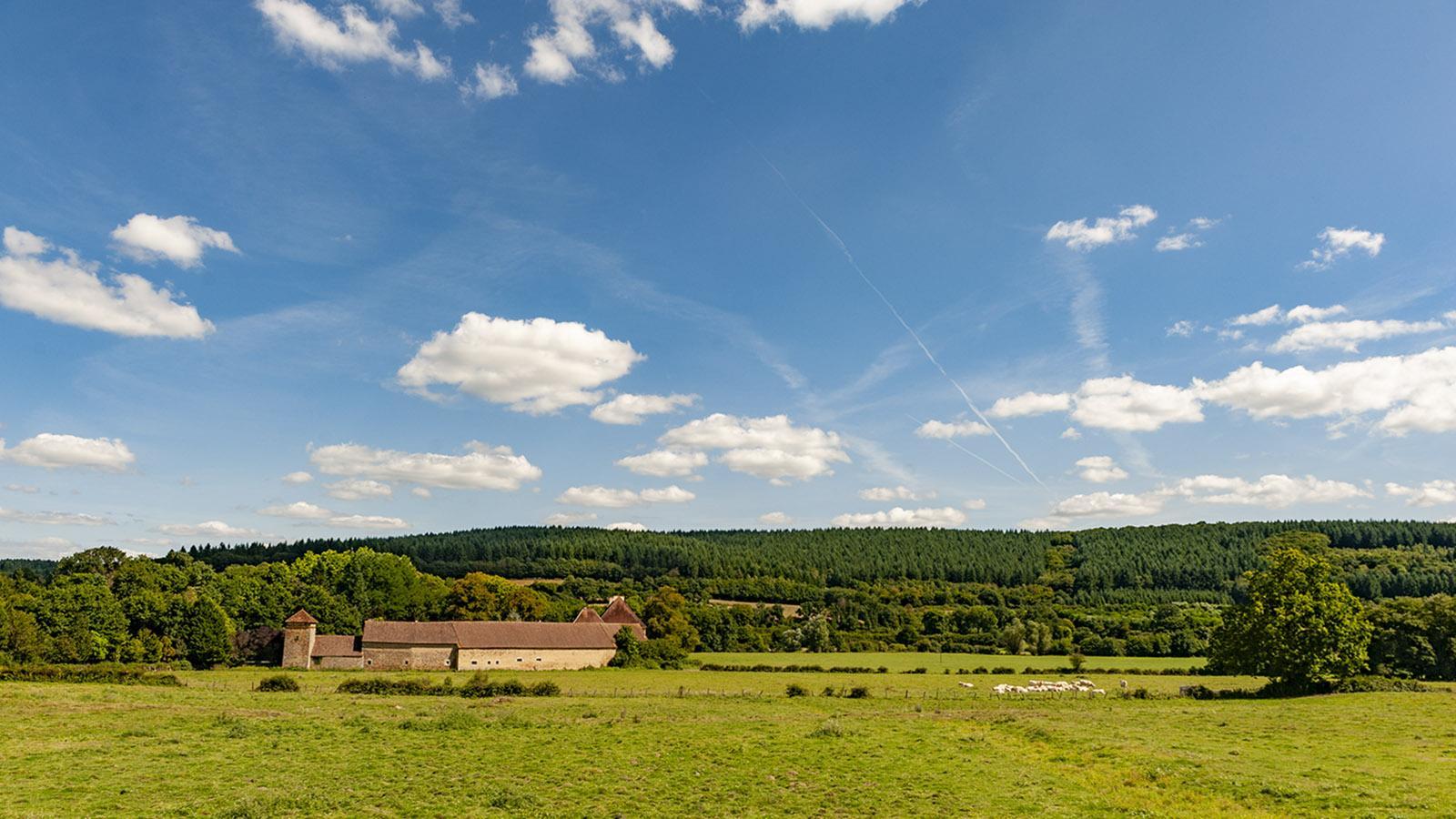 Diagonale du Vide. Große Höfe, einsame Weite: unterwegs im nördlichen Burgund. Foto: Hilke Maunder