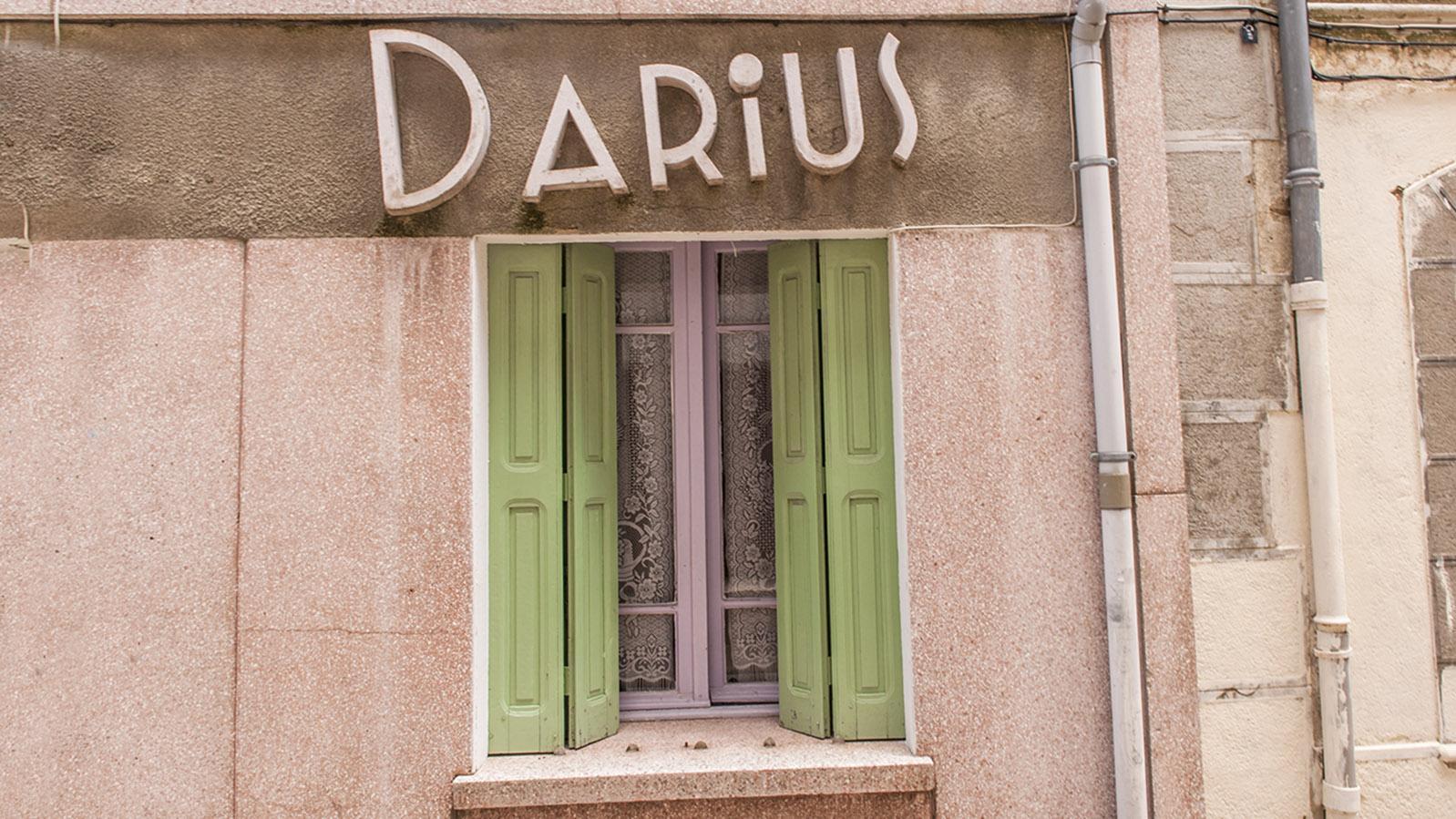 Saint-Paul-de-Fenouilet: Darius in der Rue Arago. Foto: Hilke Maunder