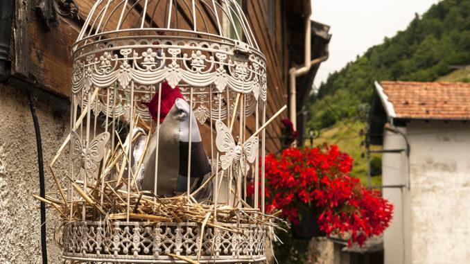 La Fajolle: bunte Hennen überall. Foto: Hilke Maunder
