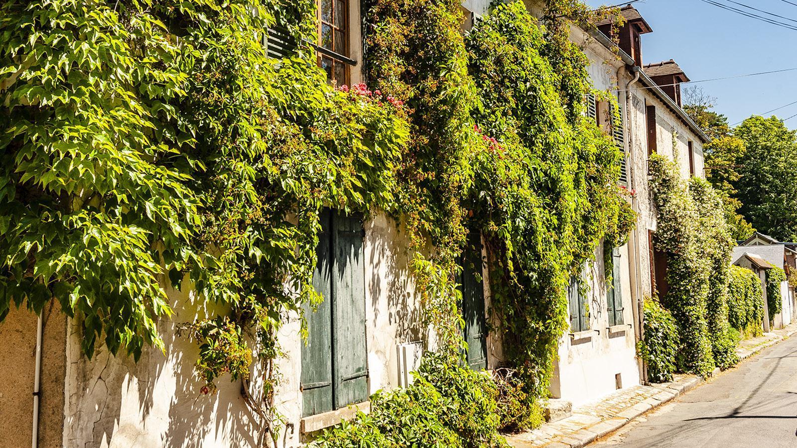 La Roche-Guyon: efeubegrünt - eine Gasse im Hezen des kleinen Ortes. Foto: Hilke Maunder