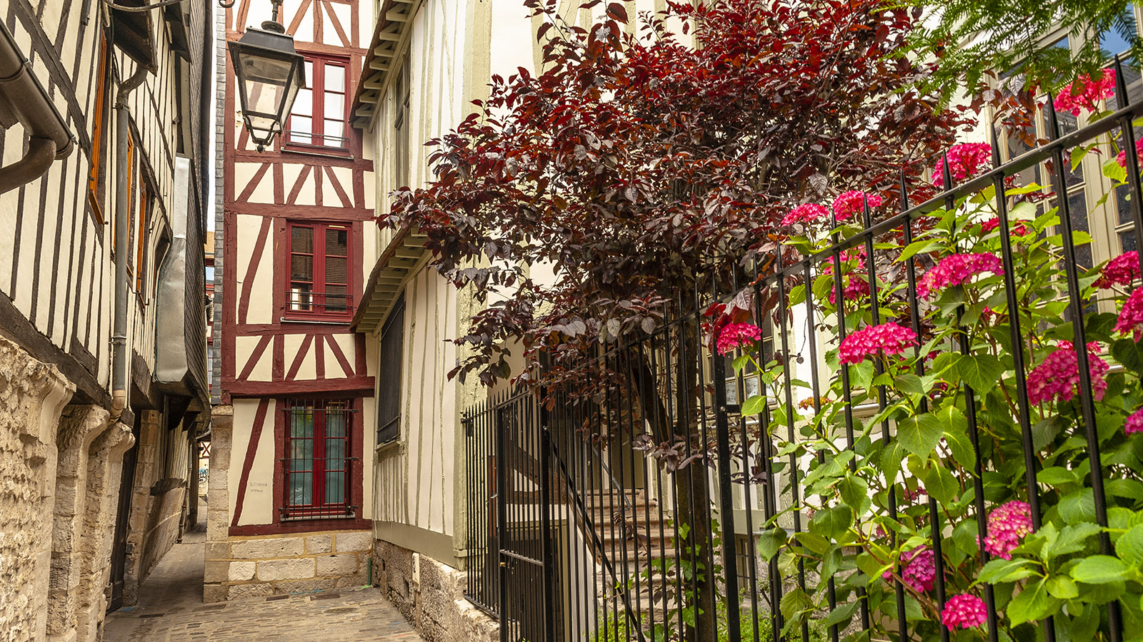 Rouen: die schmale Rue des Chanoines. Foto: Hilke Maunder