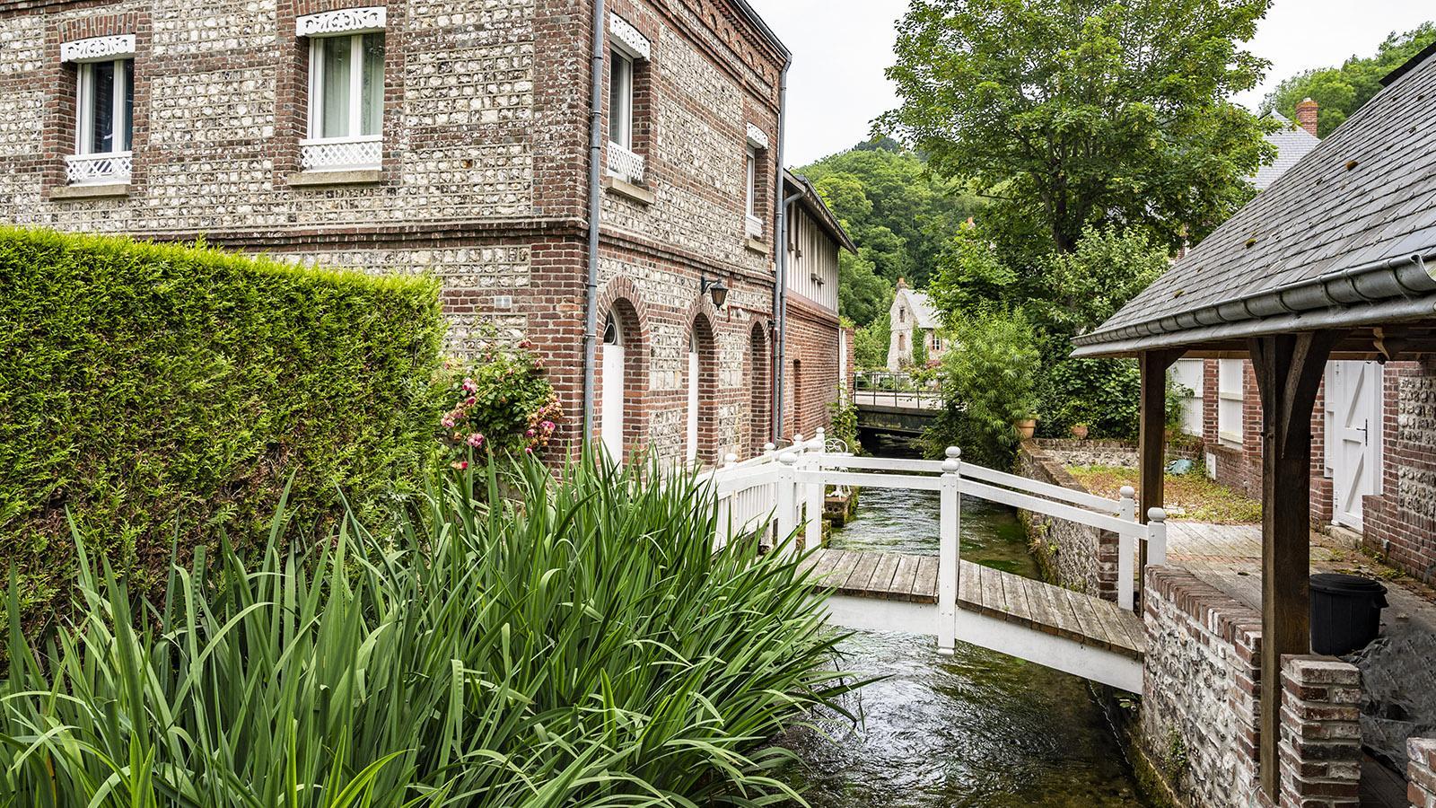 Silex-Backstein-Häuser säumen in Veules-les-Roses das Ufer der Veules. Foto: Hilke Maunder