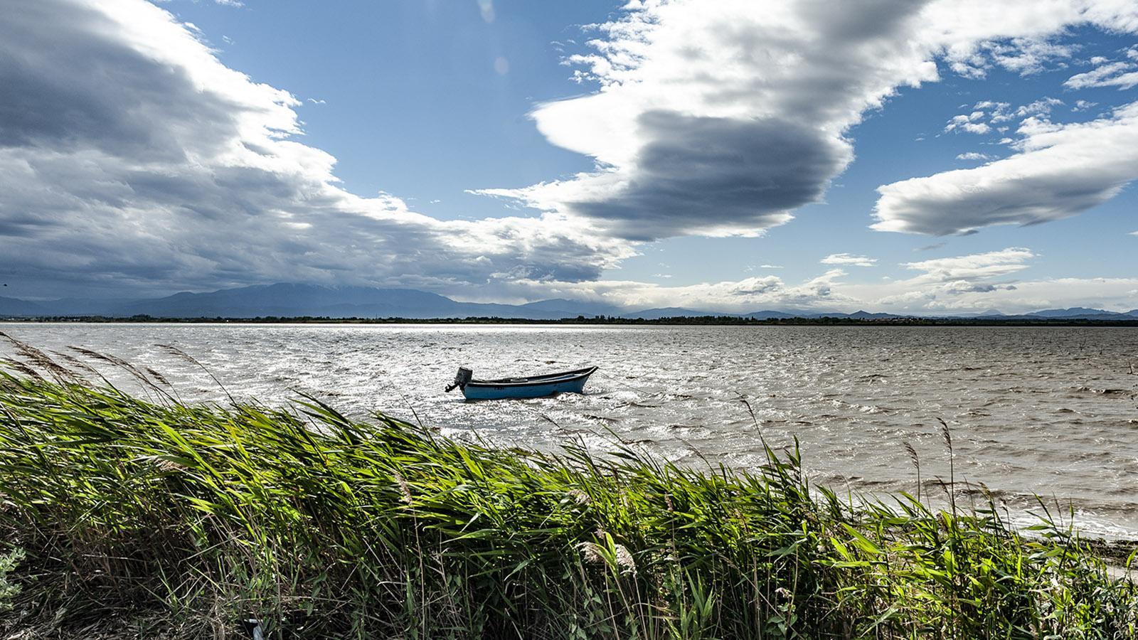 Lagunenseen im Languedoc: Der Canigou ist immer im Blick. Foto: Hilke Maunder
