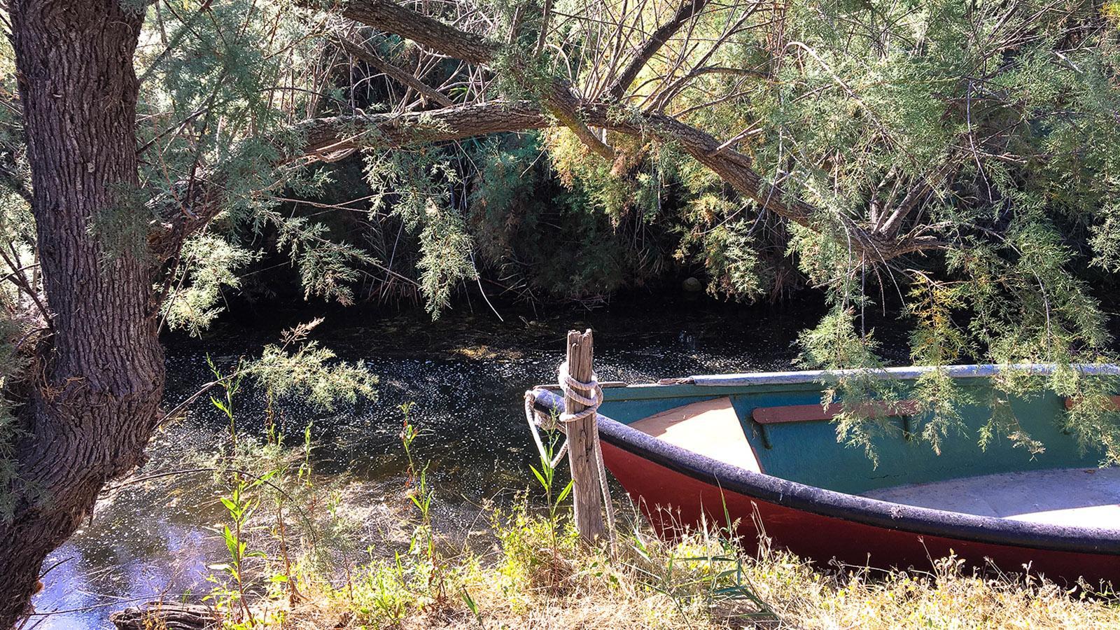 Lagune von Salses-Leucate: Holzkahn am Ufer. Foto: Hilke Maunder