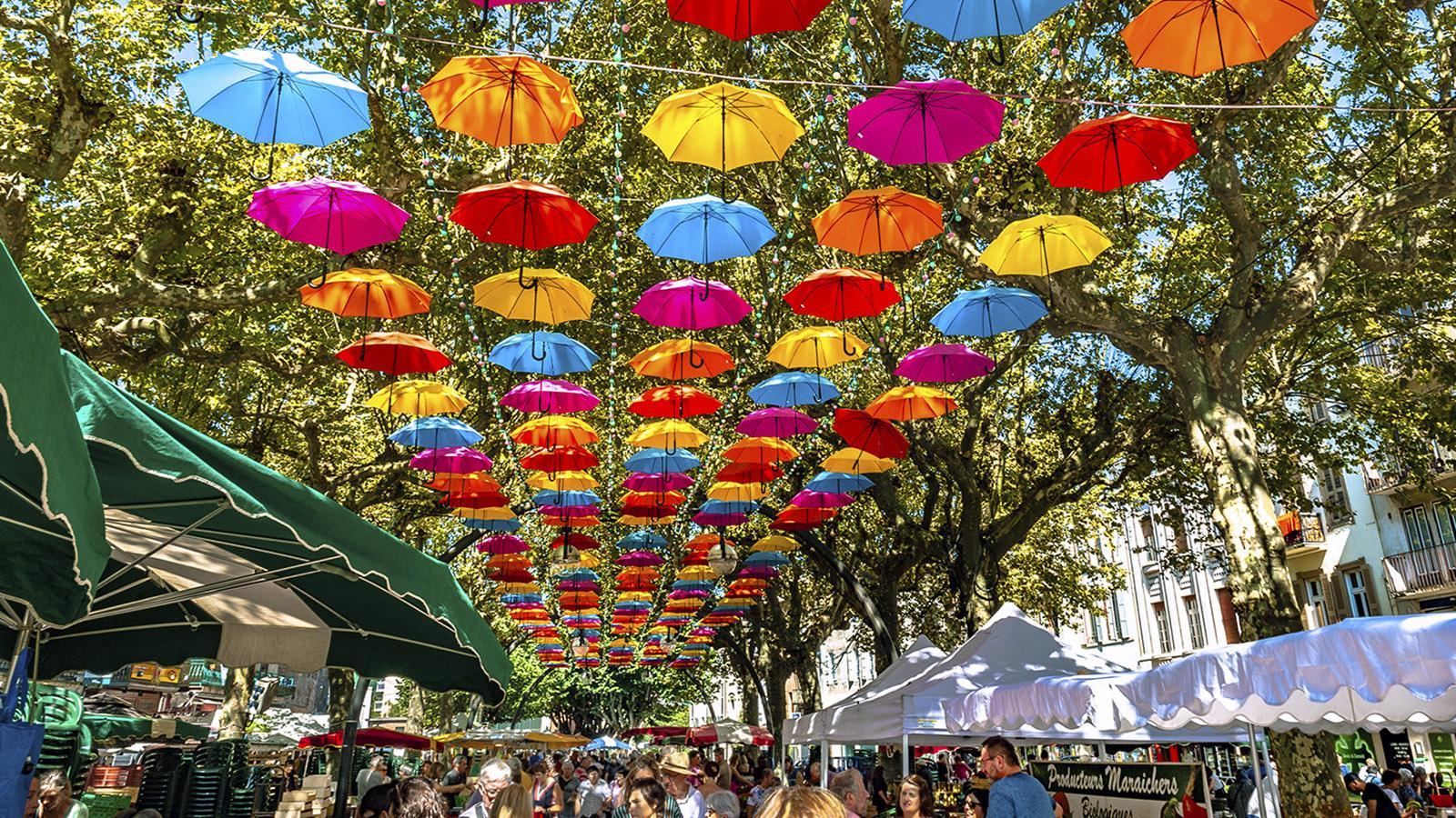 Pamiers: bunte Schirme schützen den Wochenmarkt vor Regen - und sorgen für Farbe zwischen den Platanen. Foto: Hilke Maunder