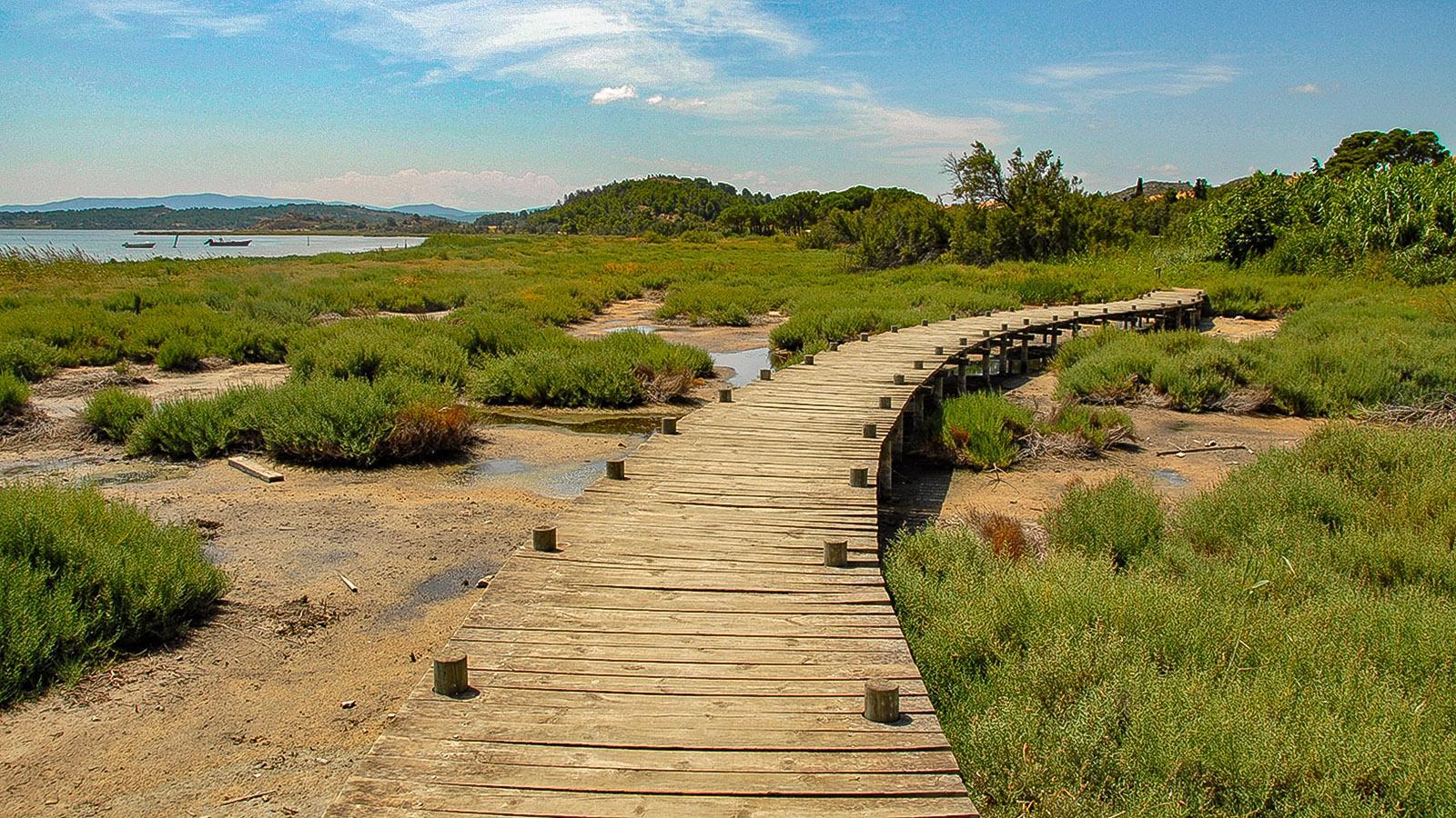Lagunenseen des Languedoc: Ein Bohlenweg erschließt das Ufer des Étang de Bages. Foto: Hilke Maunder