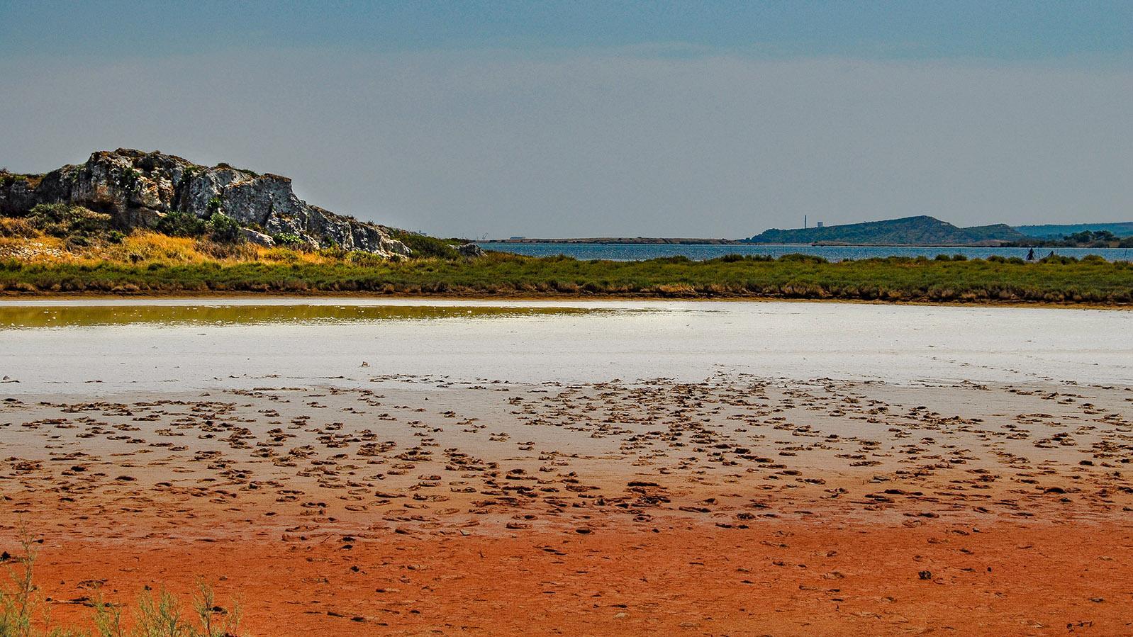 Lagunenseen im Languedoc: beim Étang de Bages: Salzüberkrustet: Ufer eines Étang im reggionalen Naturpark von Narbonne. . Foto: Hilke Maunder