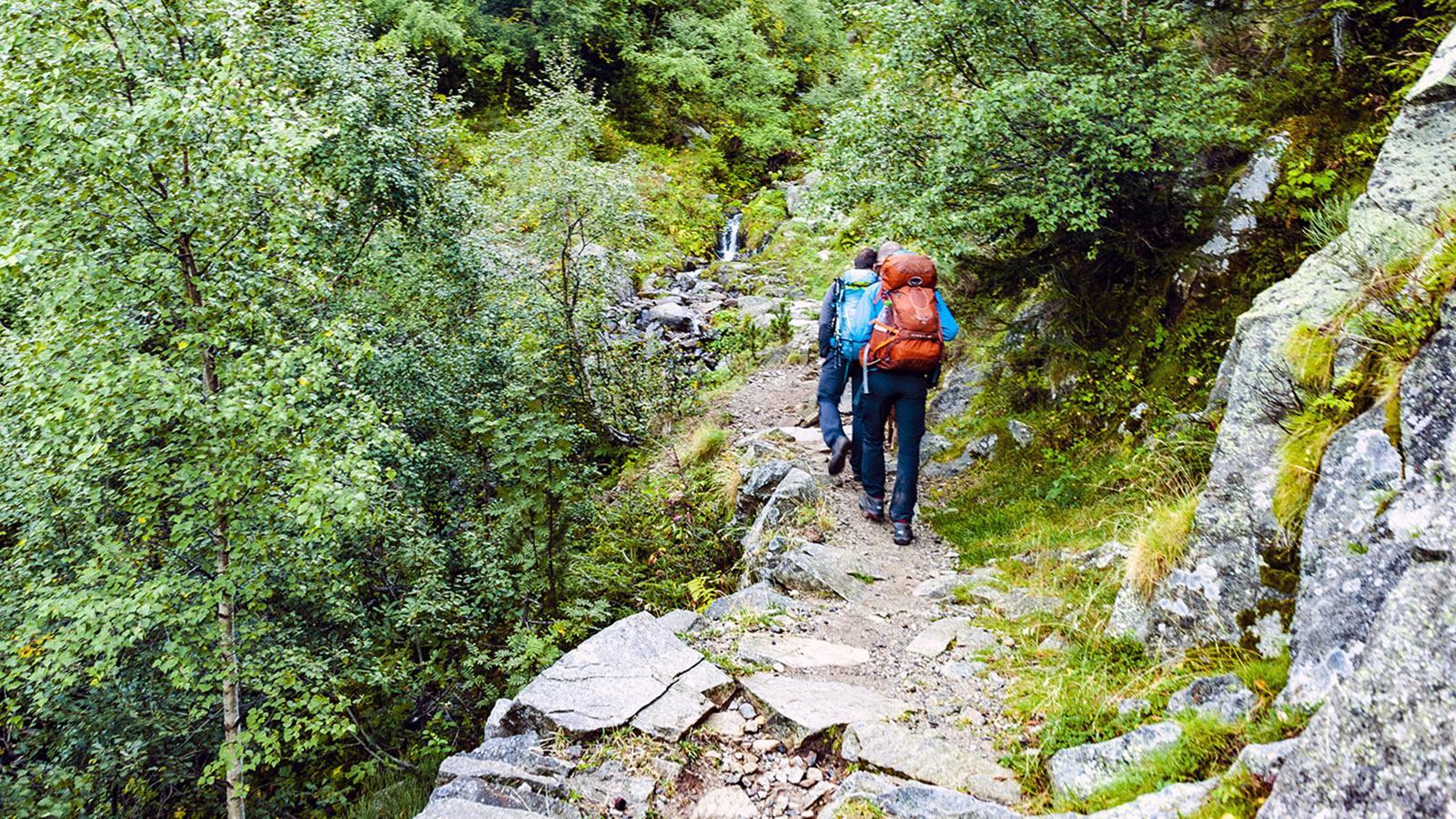 Canigo: Wanderweg bei Marialles. Foto: Hilke Maunder