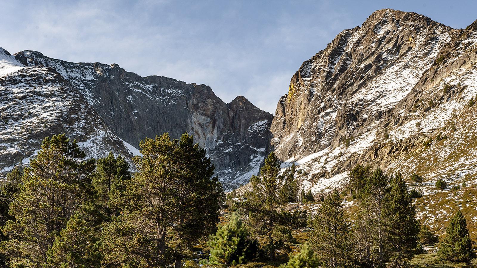 Canigó: Blick auf den Gipfel von Les Cortalets. Foto: Hilke Maunder