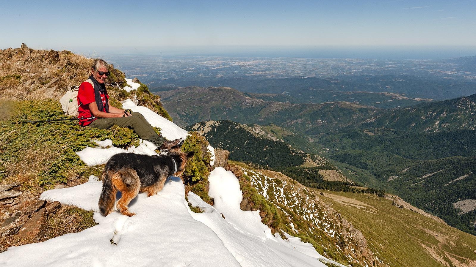 Canigo: Wanderin auf Wachholder. Foto: Hilke Maunder