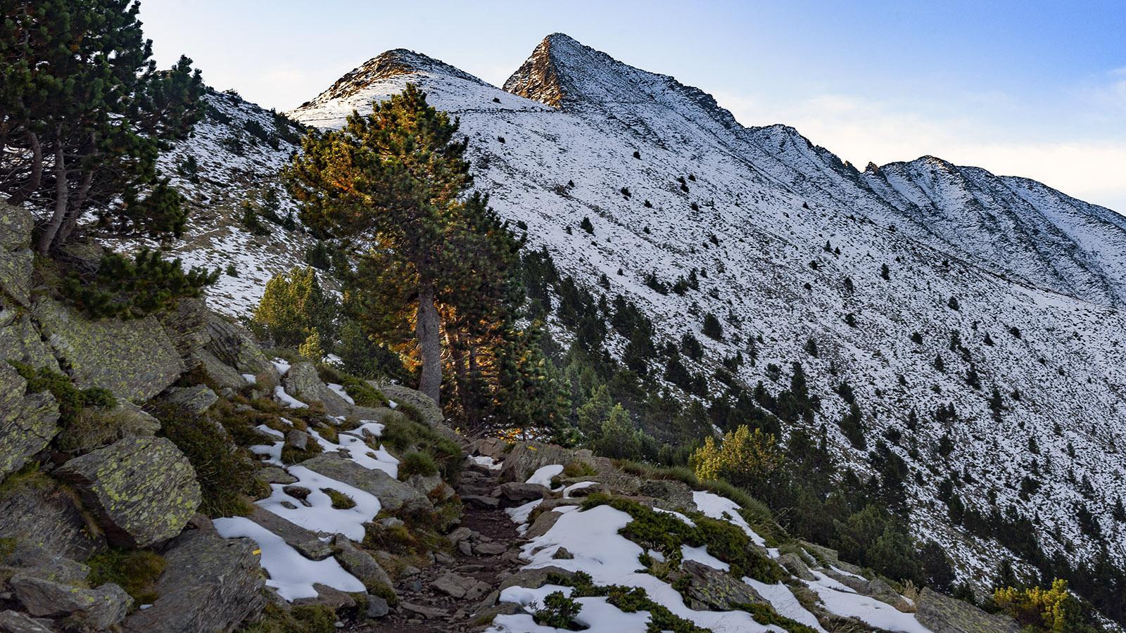 Canigó: der klassische Weg zum Gipfel. Foto: Hilke Maunder