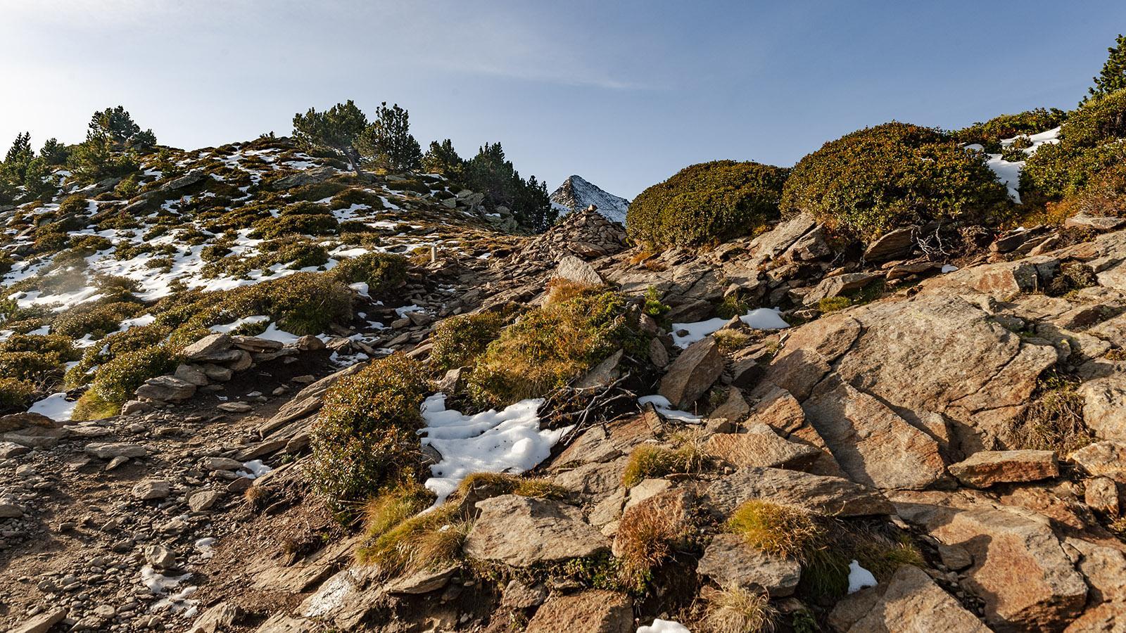 Canigó: Blick auf den Gipfel bei m Aufstieg zum Pic Joffre. Foto: HIlke Maunder