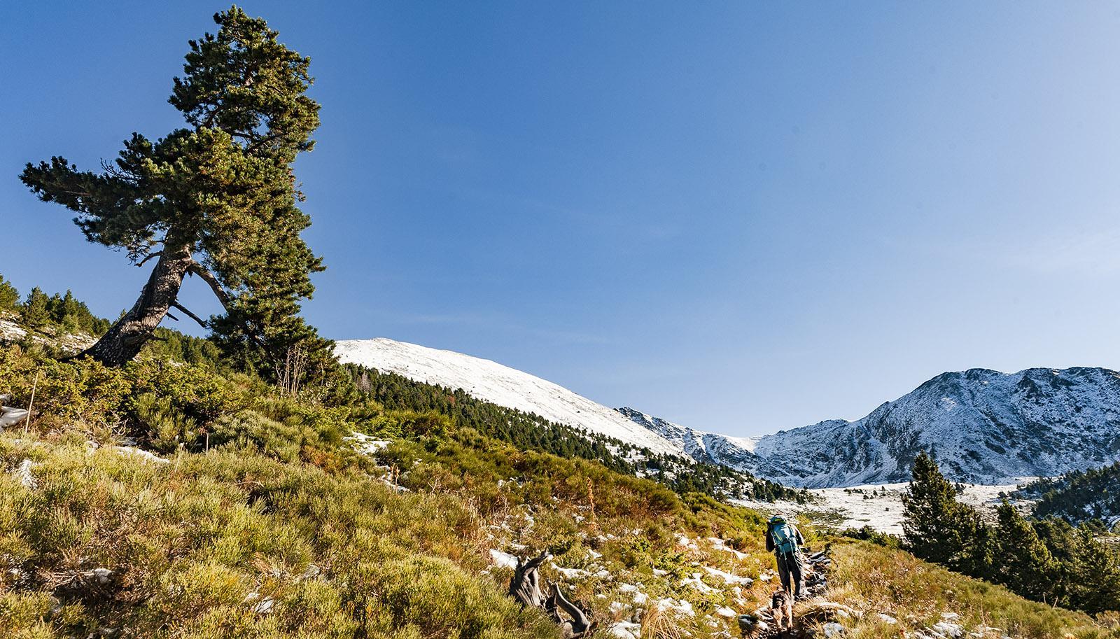 Canigo: Auf dem Weg zur Schutzhütte Refuge d'Arago. Foto: Hilke Maunder