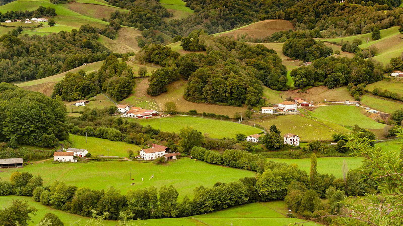 Kintoa-Heimat: das Vallée des Aldudes im Baskenland. Foto: Hilke Maunder
