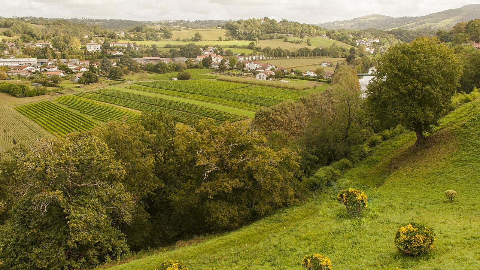 Die Piment d'Espelette-Felder von Cambo-les-Bains bewässert die Nive. Foto: Hilke Maunder