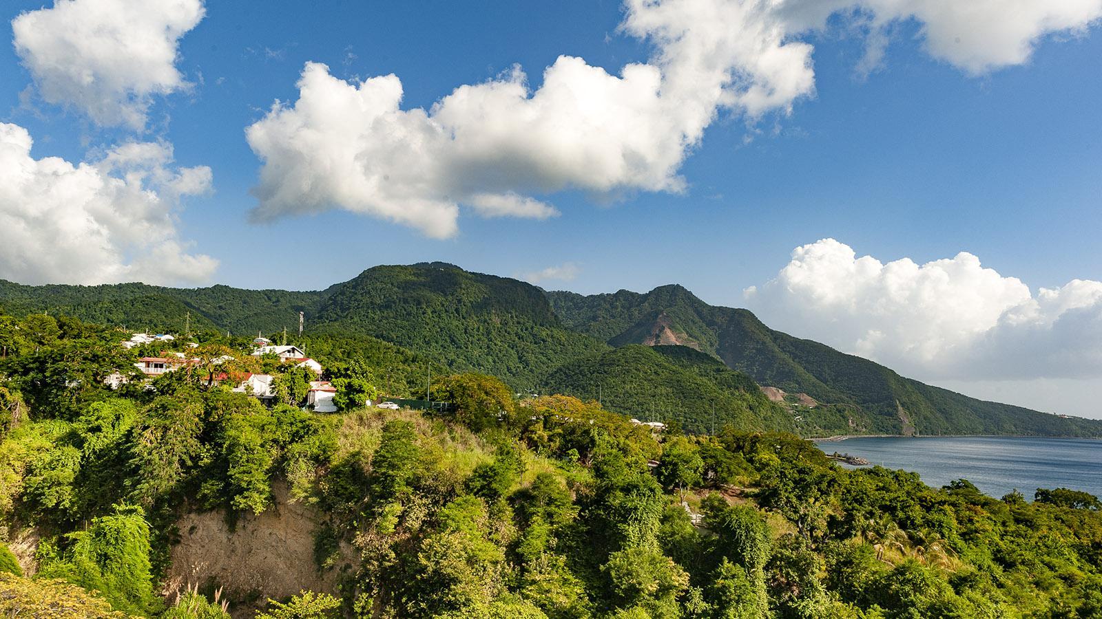 Guadeloupe: Die Passatwinde sorgen für tropisches Grün auf der Karibikinsel. Foto: Hilke Maunder