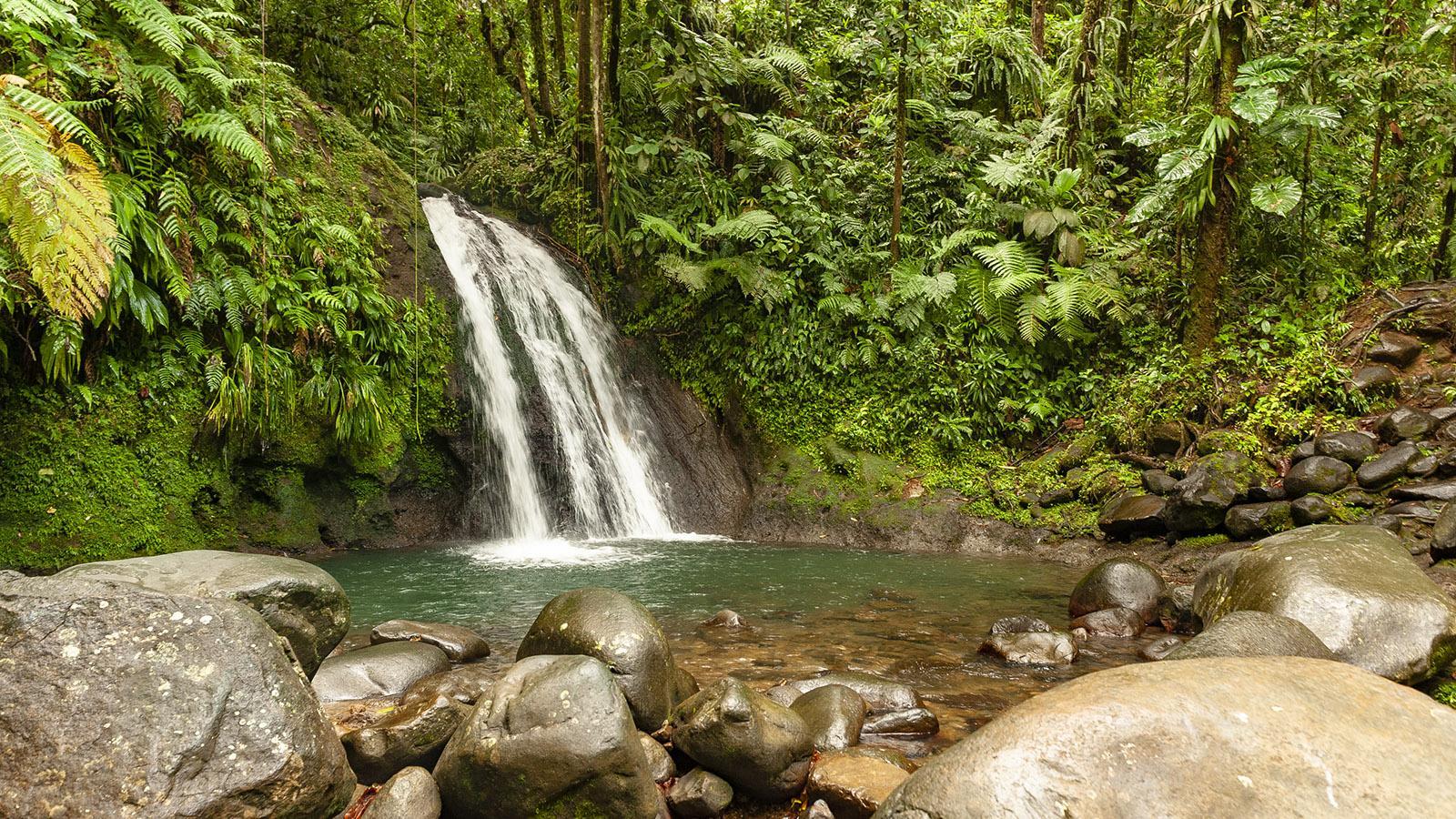 Guadeloupe: der Flusskrebswasserfall im Herzen des Nationalparks. Foto: Hilke Maunder