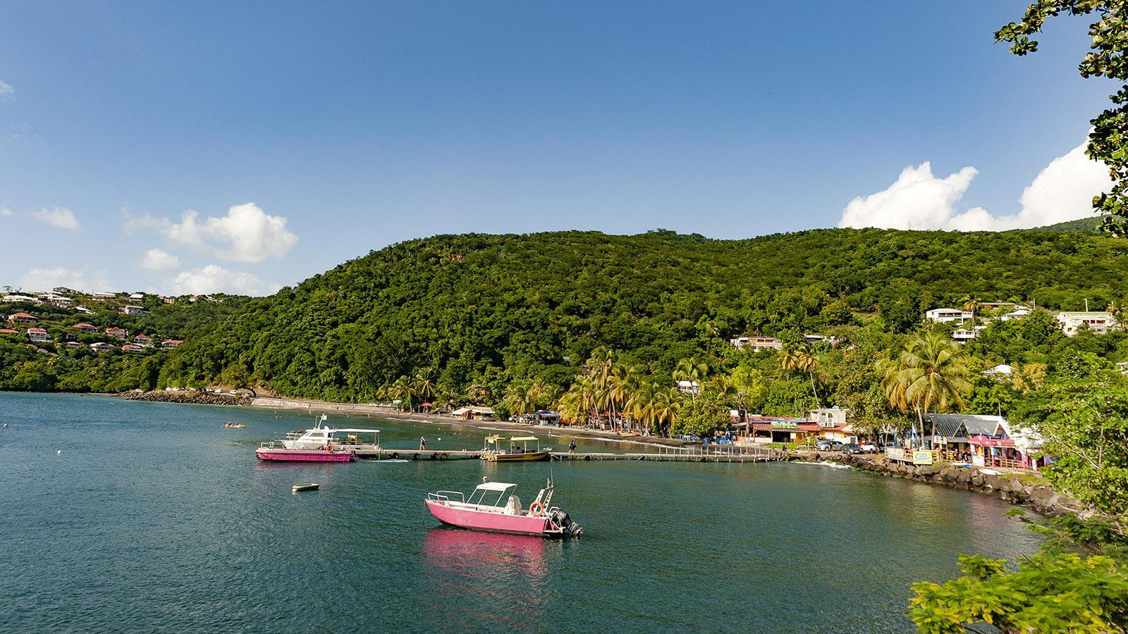 Guadeloupe: die Bucht von Malendure. Foto: Hilke Maunder