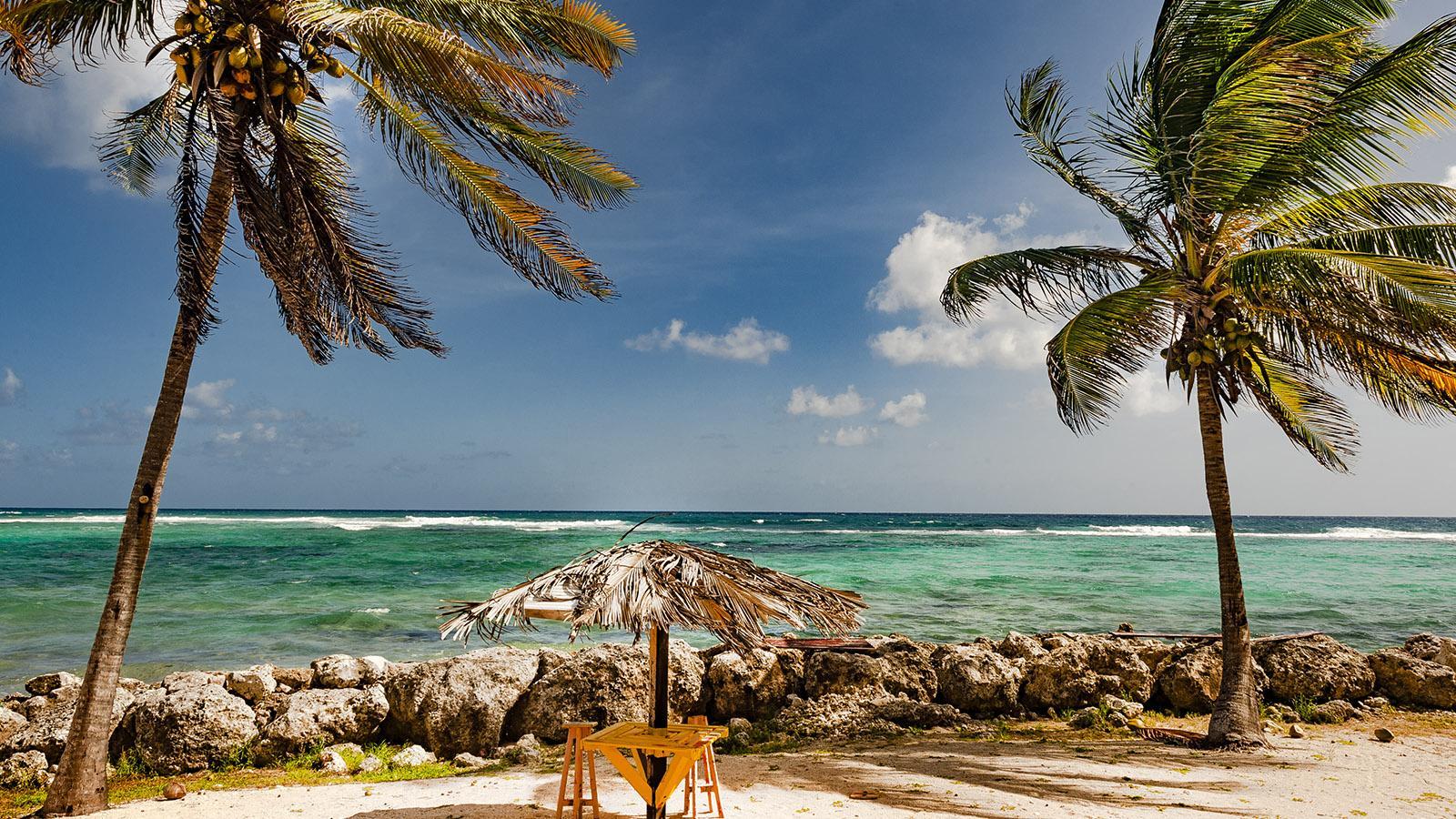 Marie-Galante: ein karibischer Traum - die Südküste. Foto: Hilke Maunder