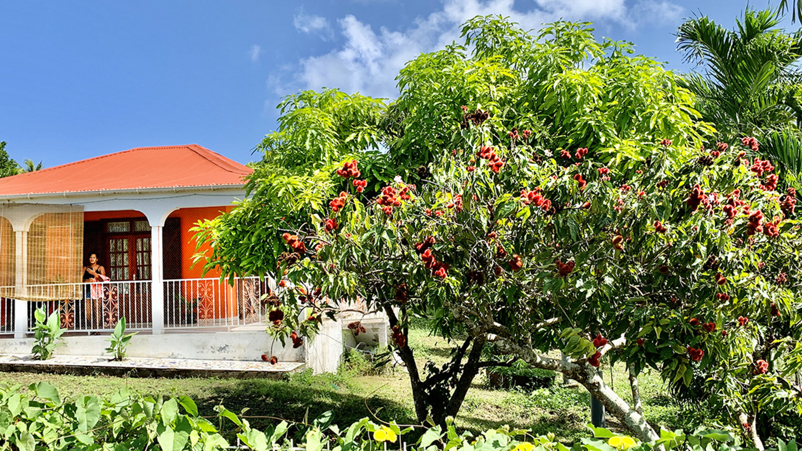 Marie-Galante: Villa im Inselinnern. Foto: HIlke Maunder