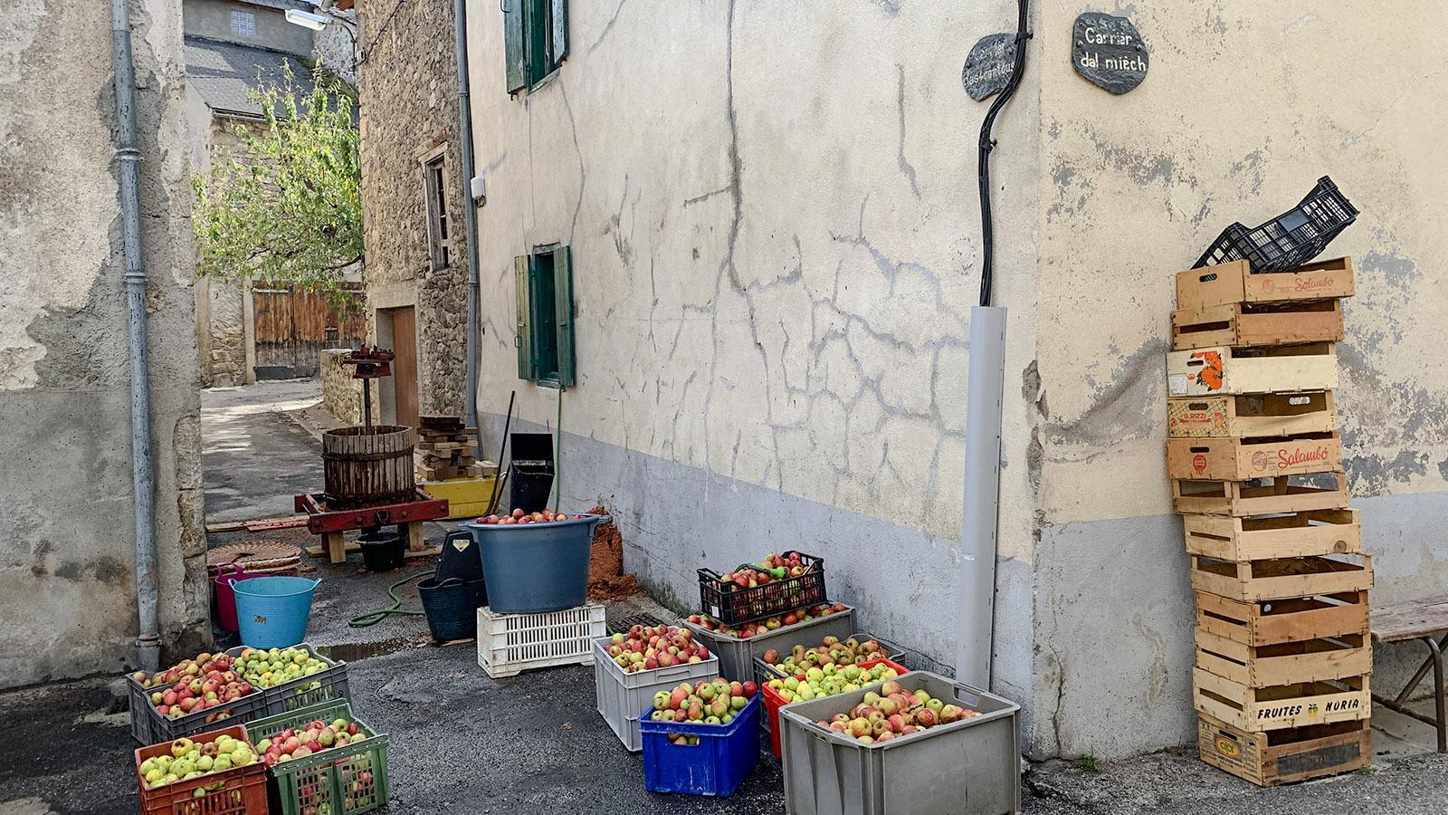 Im Donezan leben noch viele Selbstversorger. Hier presst eine Familie ihre Äpfel zu Saft – Vitamine für den Winter. Foto: Hilke Maunder