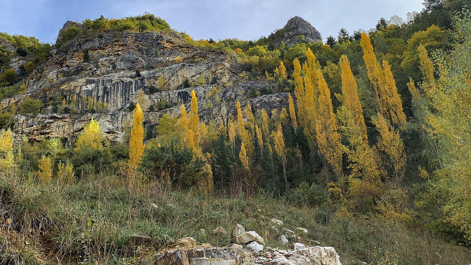 Donezan: heller Kalk und gelbes Laub... Foto: Hilke Maunder