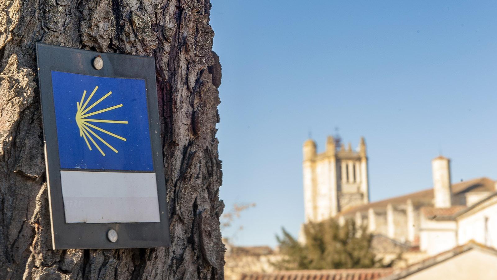 Wandern auf dem Jakobsweg durch Frankreich. Auch Condom im Gers liegt an einer Pilgerroute. Foto: Hilke Maunder