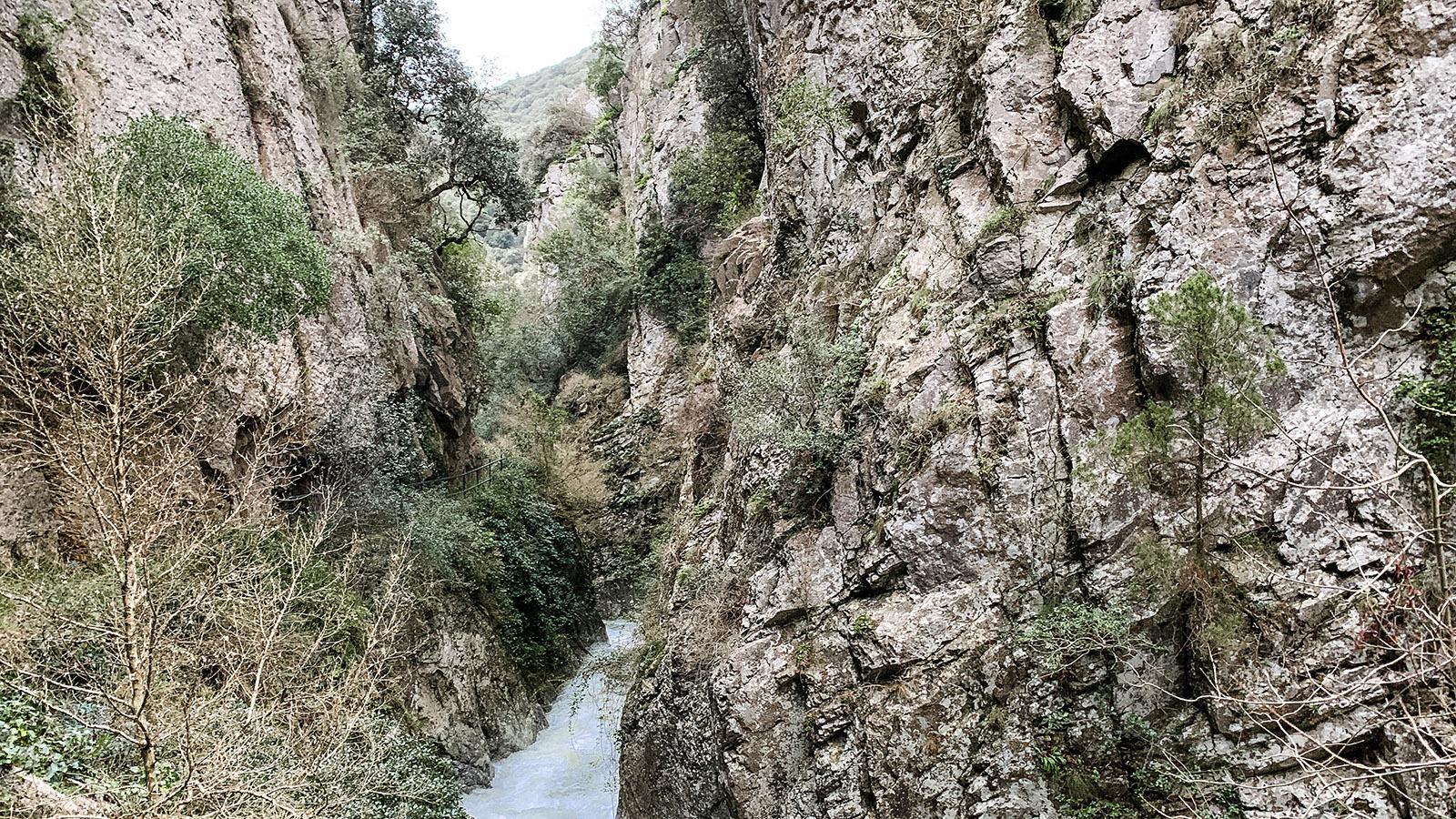 Gorges Saint-Jaume. Steil ragen die Felsen auf. Foto: Hilke Maunder