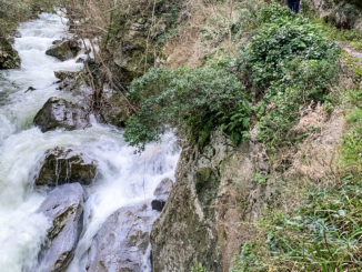 Gorges Saint-Jaume: Immer dicht am Fluss entlang führt der Wanderweg. Foto: Hilke Maunder