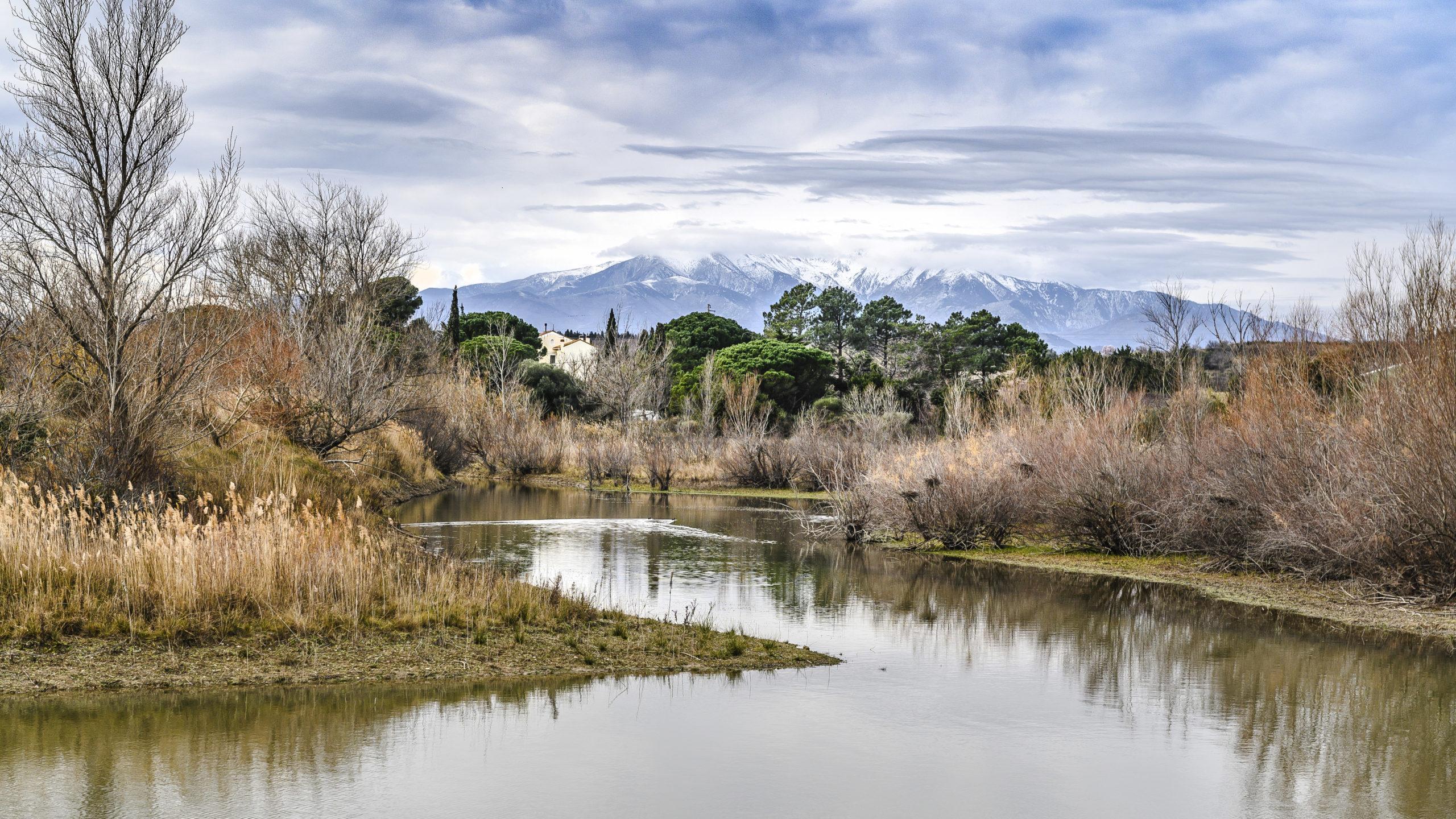 Lac de la Raho: Das Naturschutzgebiet im Südwesten des Sees.