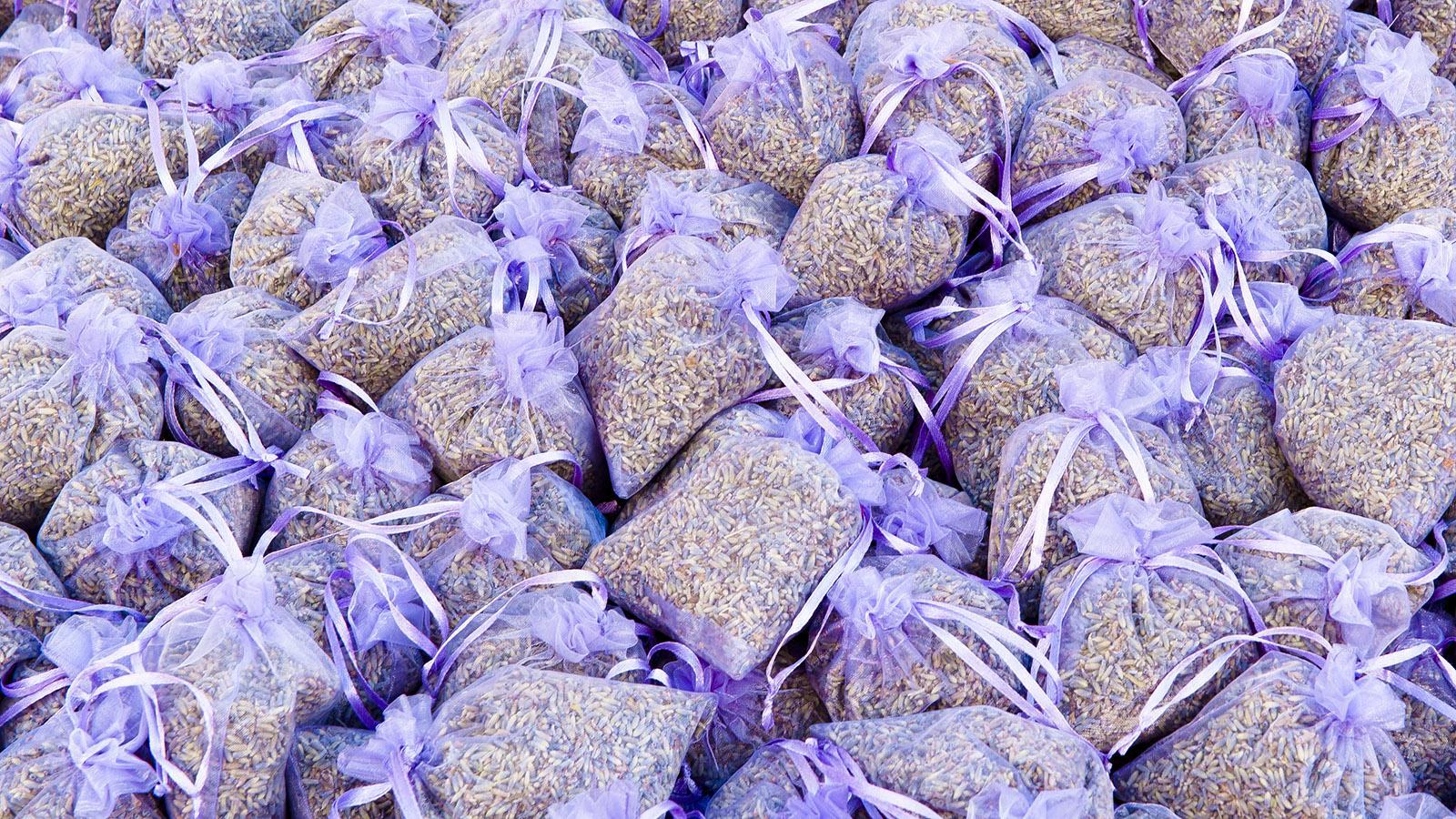 Lavendel - der Duft des Südens. Foto: Hilke Maunder