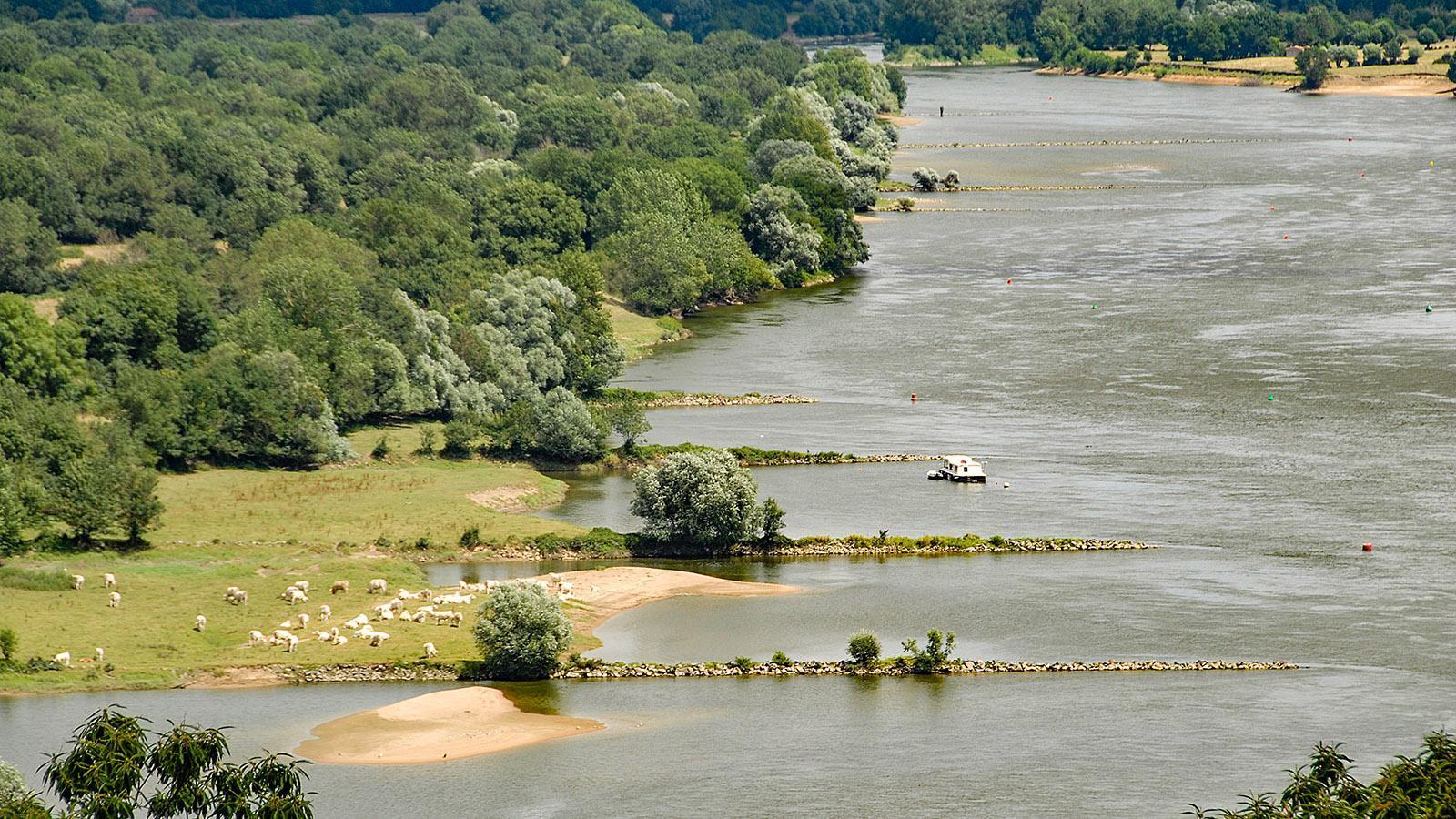 Die Loire. Foto: Hilke Maunder