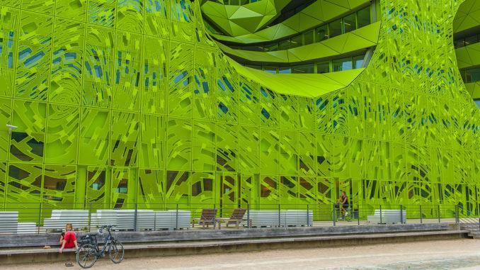 Confluencen: Cube Verte auf der Halbinsel Confluence. Foto: Hilke Maunder
