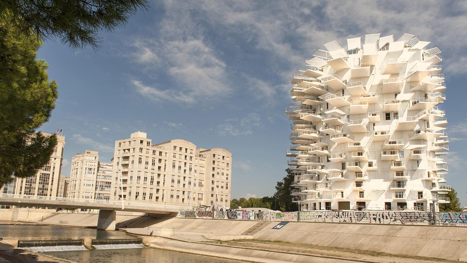 Montpellier: Die Arbre Blanche am Lez. Foto: Hilke Maunder