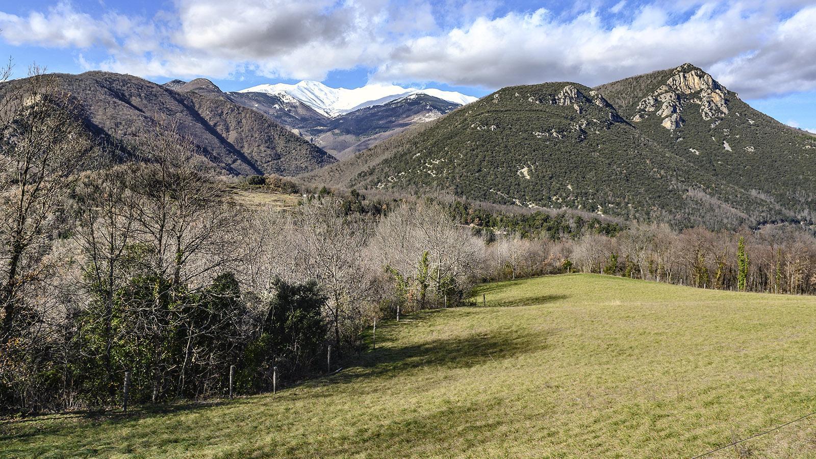 Serralongue: Ausblicke auf den Canigou. Foto: Hilke Maunder