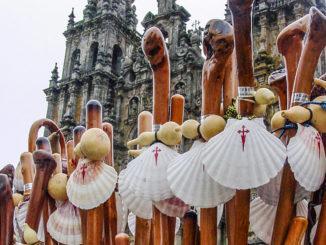 Jakobswege: Symbol der Pilger: die Jakobsmuschel. Foto: Hilke Maunder