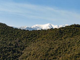 Les Apres: Blick von Caixas auf den Canigou. Foto: Hilke Maunder