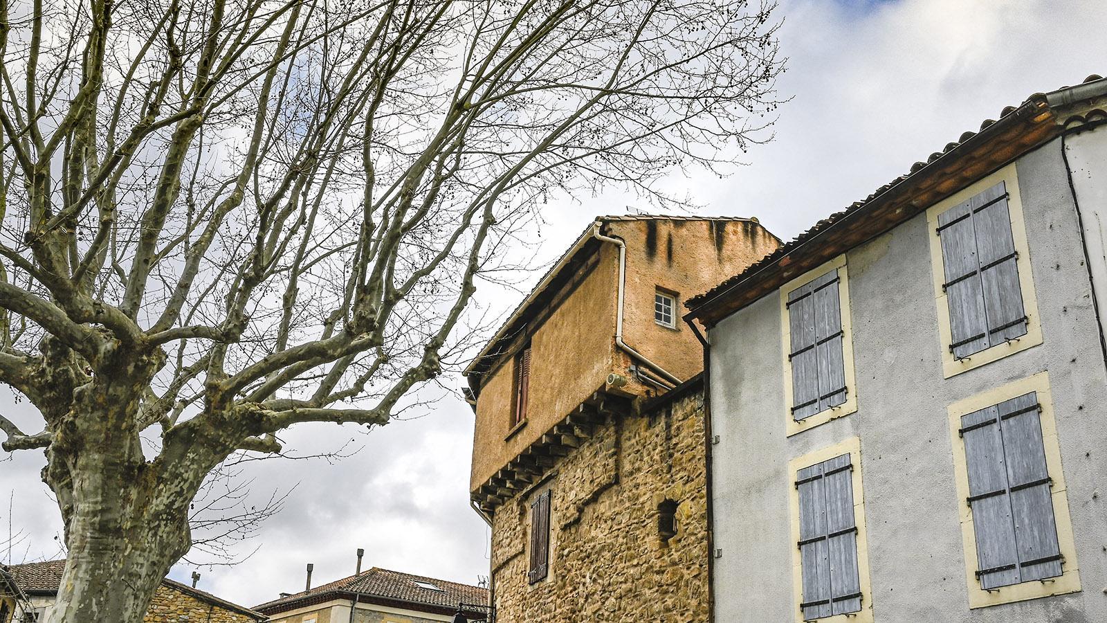 Campagne-sur-Aude: Von Platanen gesäumt: die Promenade du Château Fort. Foto: Hilke Maunder