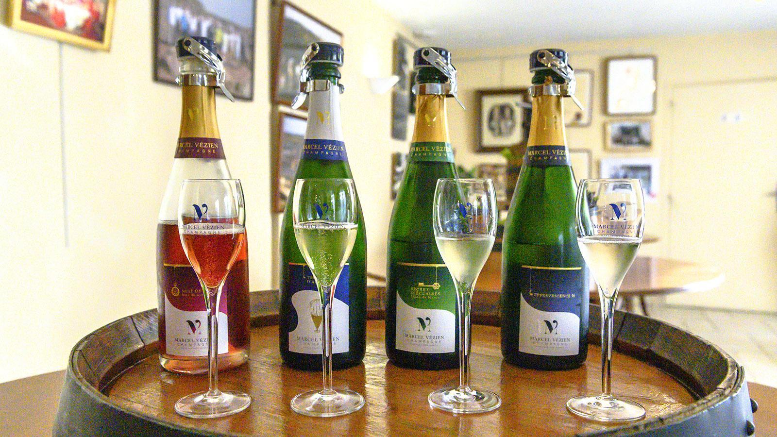 Côte des Bars: Champagner von Marcel Vézien. Foto: Hilke Maunder