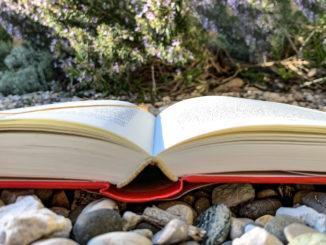 Lesetipps fürs Frühjahr