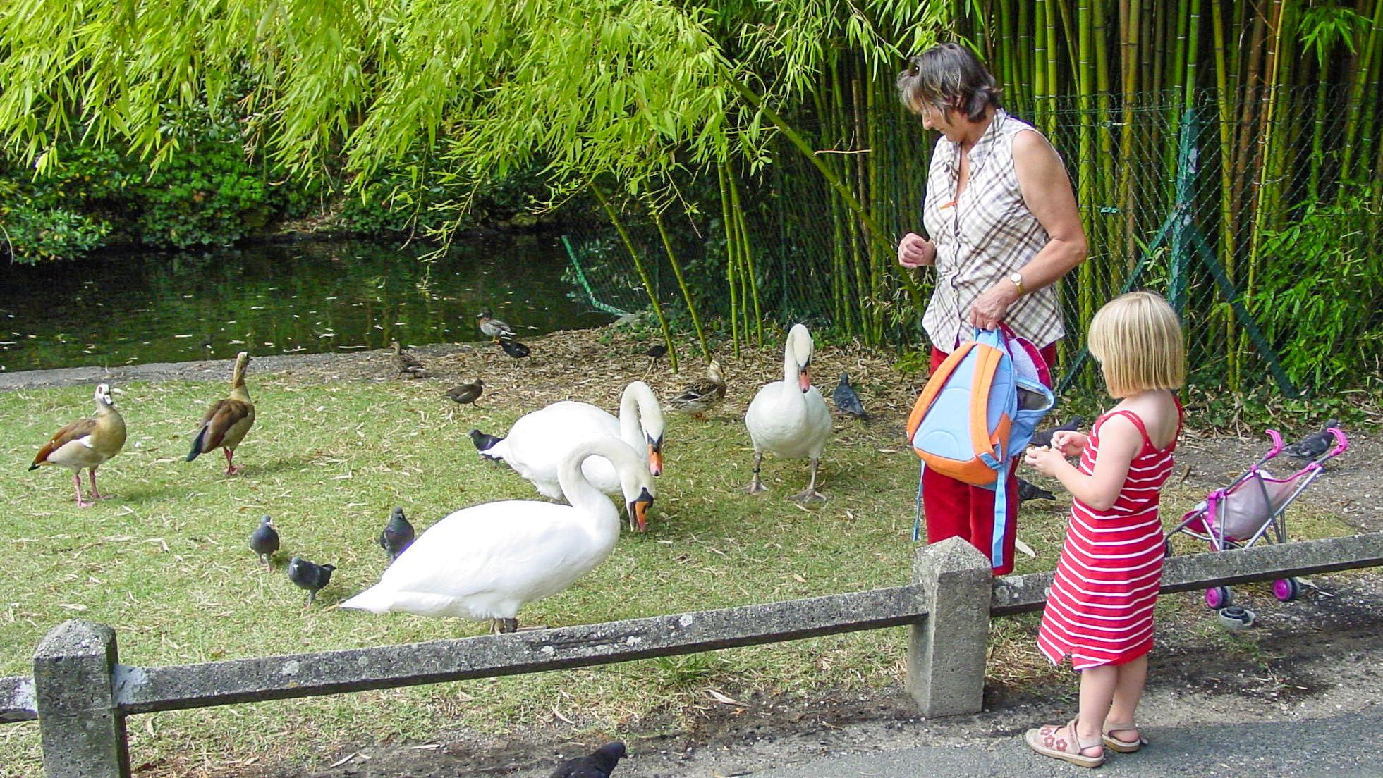 Granny Au-Pair: Am schulfreien Mittwoch geht es in den Park.