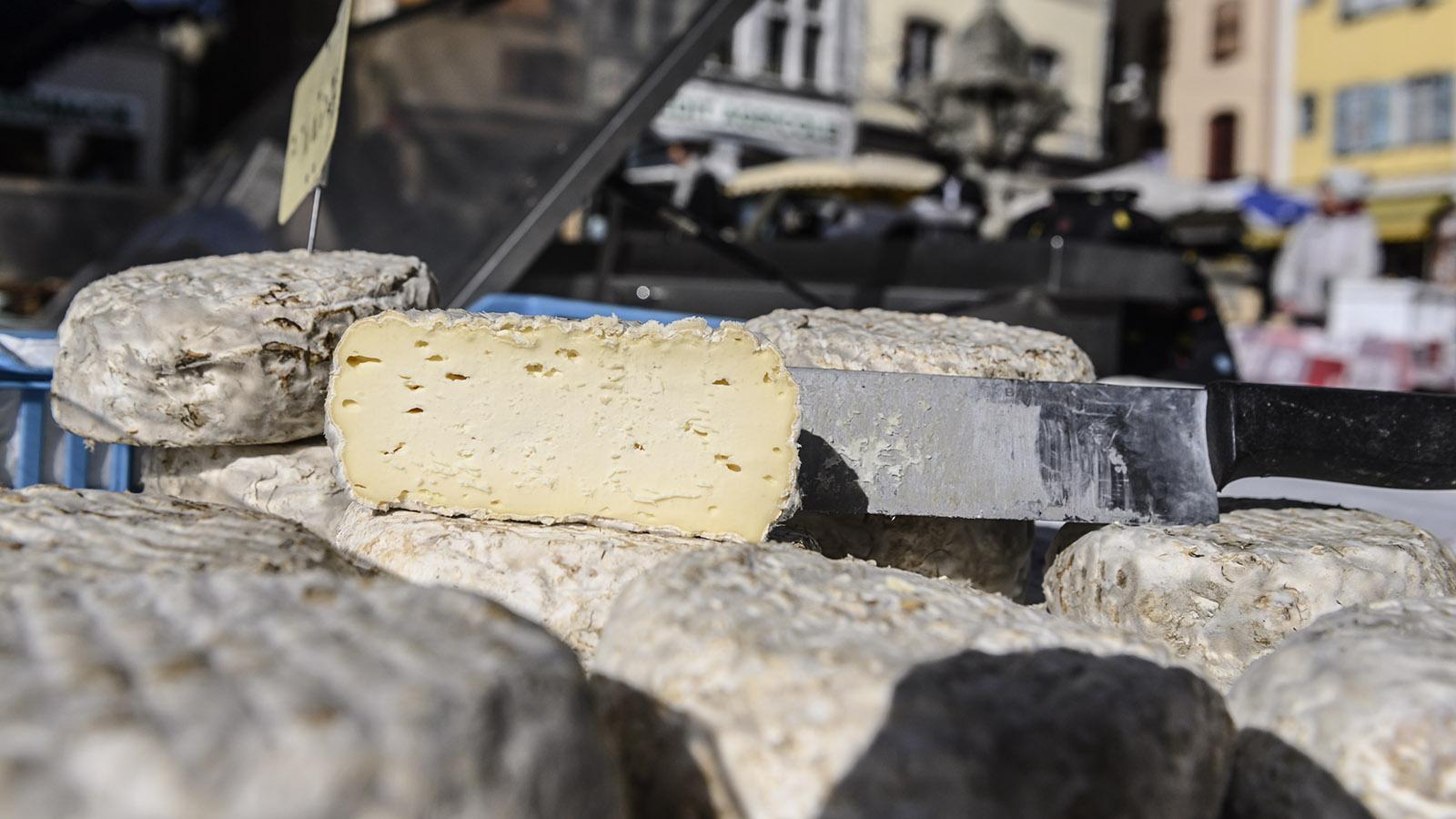 Le Velay, der lokale Käse aus Le Puy-en-Velay. Foto: Hilke Maunder