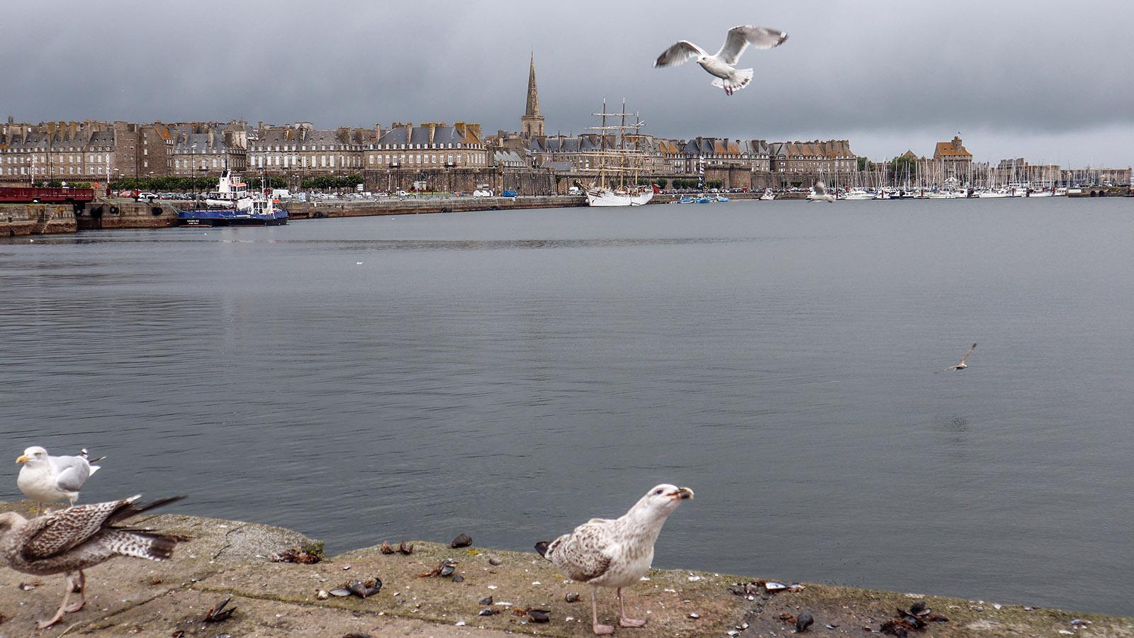 Saint-Malo in der Bretagne. Foto: Uschi Hennen