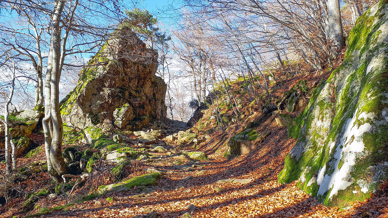 Wanderweg in der Auvergne. Foto: Maria-Theresia Riedl.