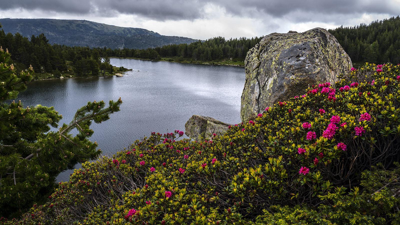 Der Lac Sac am Carlit-Massiv. Foto: Hilke Maunder