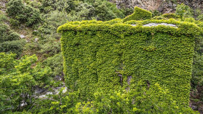 Von Efeu erobert: das alte Kurbad von Thues an der Têt. Foto: Hilke Maunder