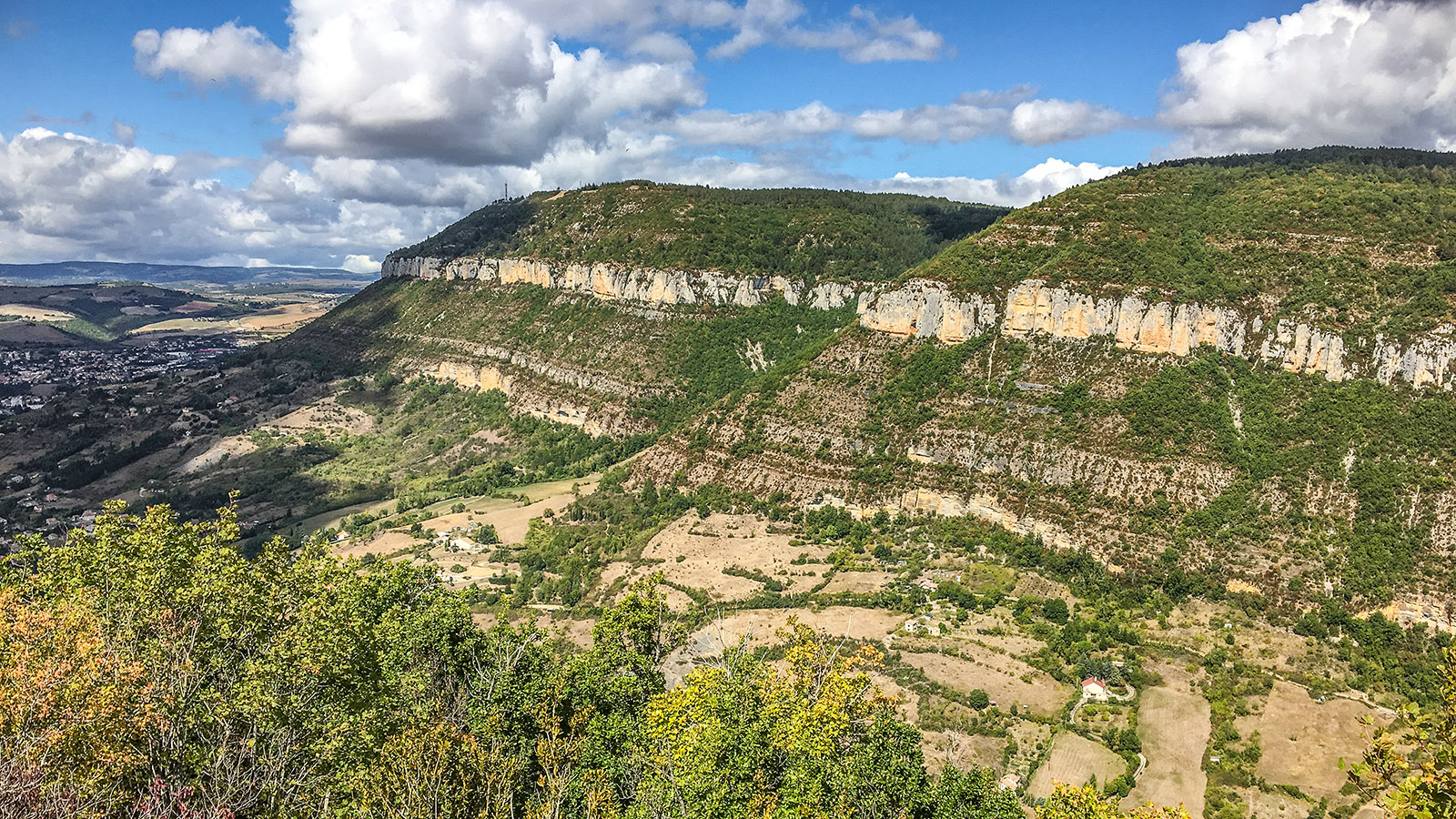 Gorges du Tarn bei Millau. Foto: Hilke Maunder